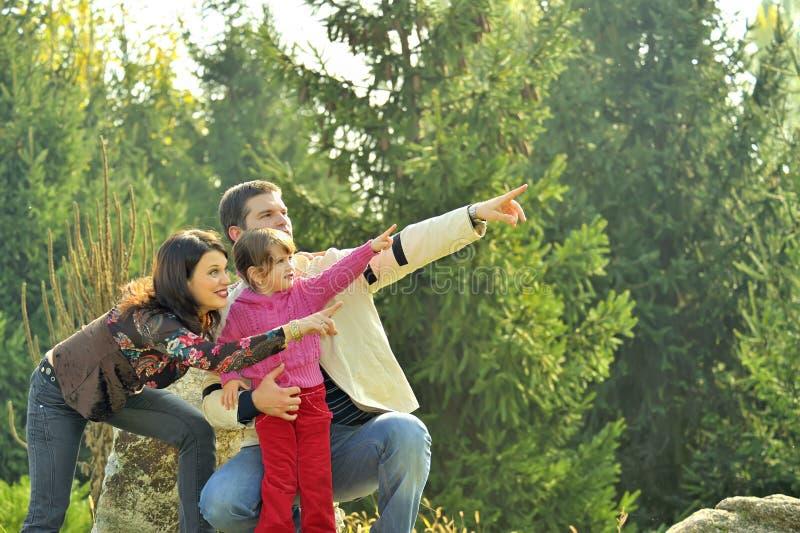 Junge Familie auf der Wiese stockbilder