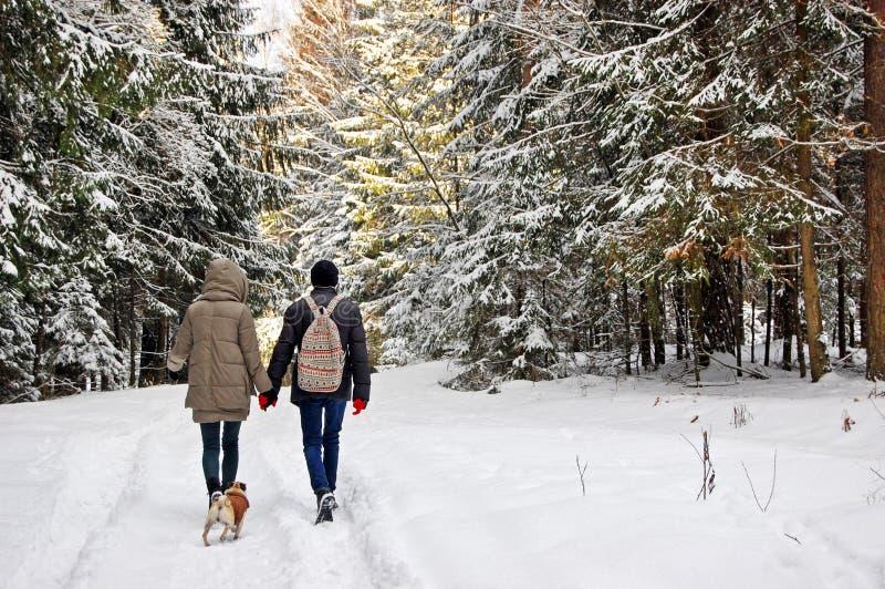 Junge Familie, die mit einem Hund im Winter-Wald auf Ferien geht lizenzfreie stockfotos