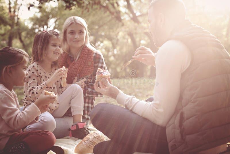 Junge Familie, die Picknick zusammen auf Wiese hat lizenzfreies stockbild