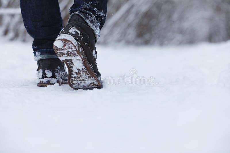 Junge Familie mit Kindern gehen in den Winterpark Winte stockbild