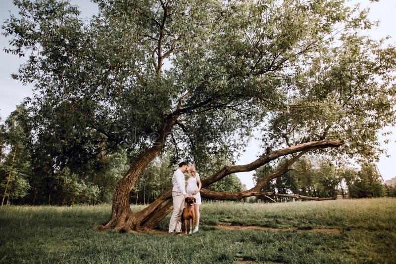 Junge Familienstellung in einer Wiese im Park lizenzfreie stockbilder