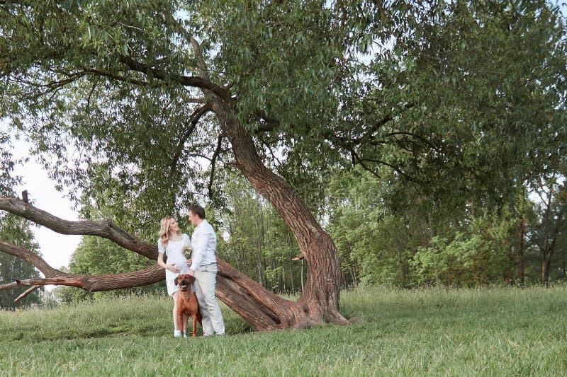 Junge Familienstellung in einer Wiese im Park stockfotos