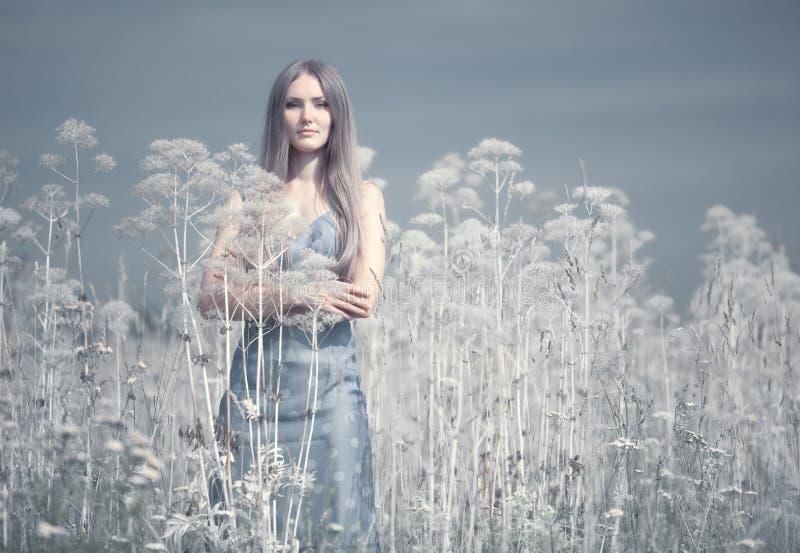 Junge Frau auf einem Sommergebiet lizenzfreie stockfotos