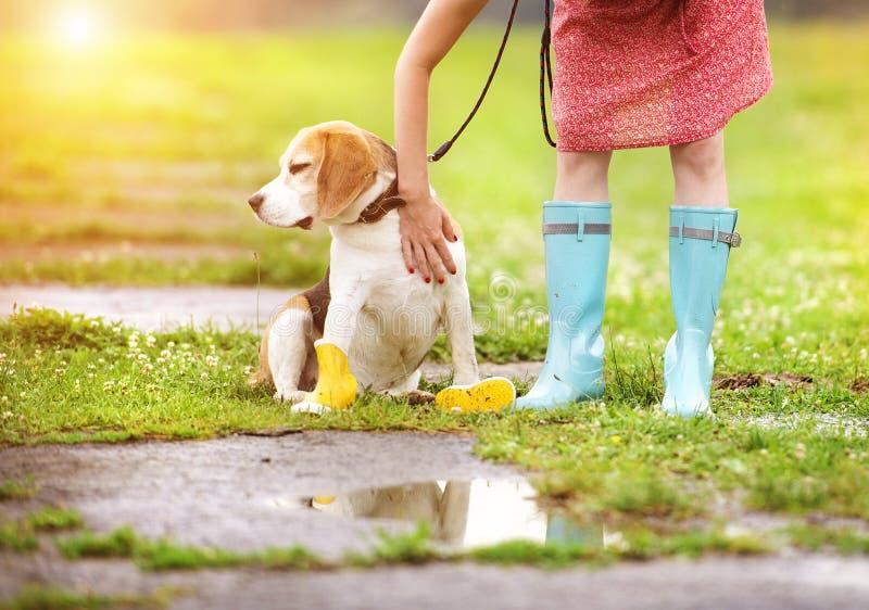 Junge Frau in den Gummistiefeln gehen ihr Hund stockbild