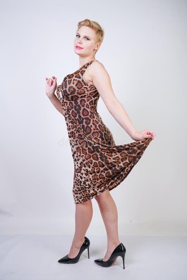 Junge Frau der hübschen Plusgröße mit dem kurzen blonden Haar, das mittleres Längensommerkleid mit Tierleoparddruck trägt nettes  stockbilder