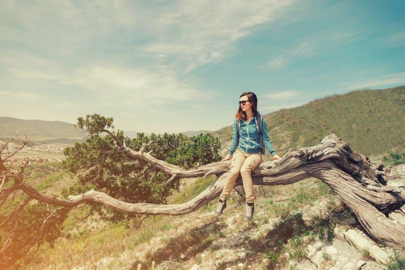 Junge Frau des Reisenden, die auf Baum im Sommer sitzt stockbild