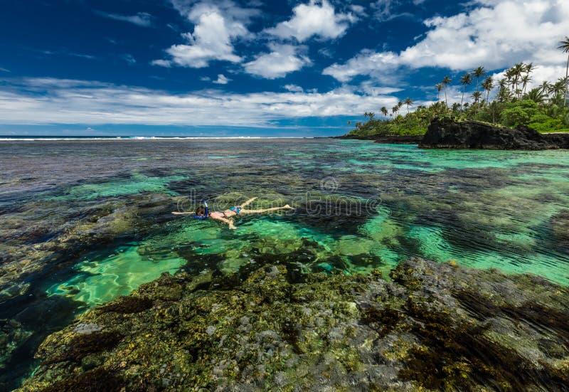 Junge Frau, die über Korallenriff auf einer Tropeninsel schnorchelt stockfotos