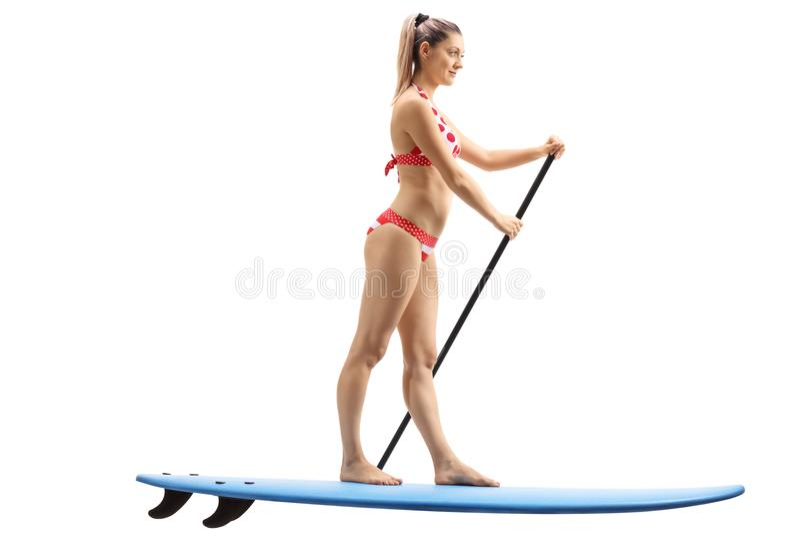 Junge Frau, die auf einem Surfbrett und einem Schaufeln steht lizenzfreie stockfotos