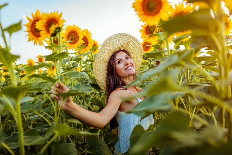 Junge Frau, die in das blühende glaubende Sonnenblumenfeld freie und bewundern Natur geht Krasnodar Gegend, Katya lizenzfreies stockfoto
