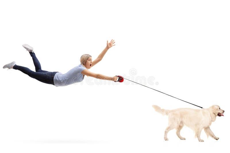 Junge Frau, die durch ihren Hund gezogen wird lizenzfreies stockfoto