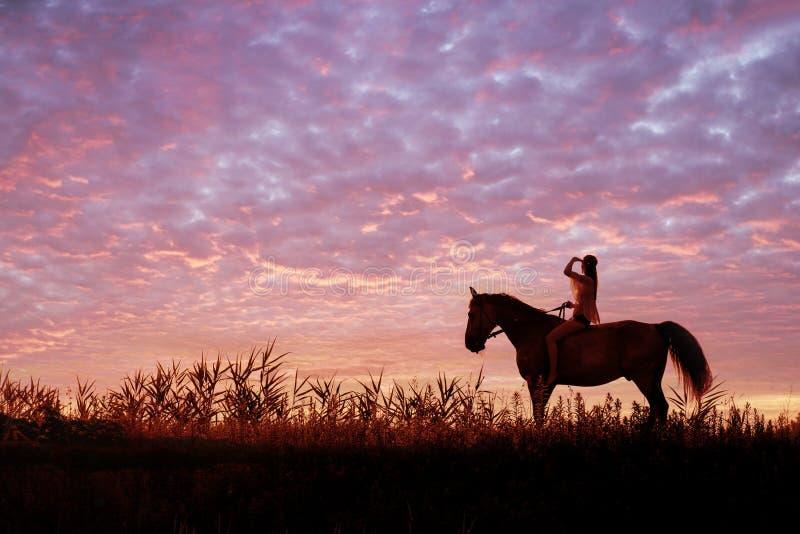 Junge Frau, die ein Pferd auf die Wiese reitet stockfotos