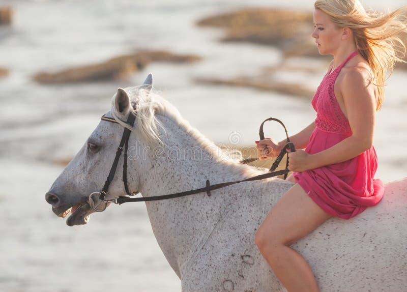 Junge Frau, die ein Pferd reitet stockfoto