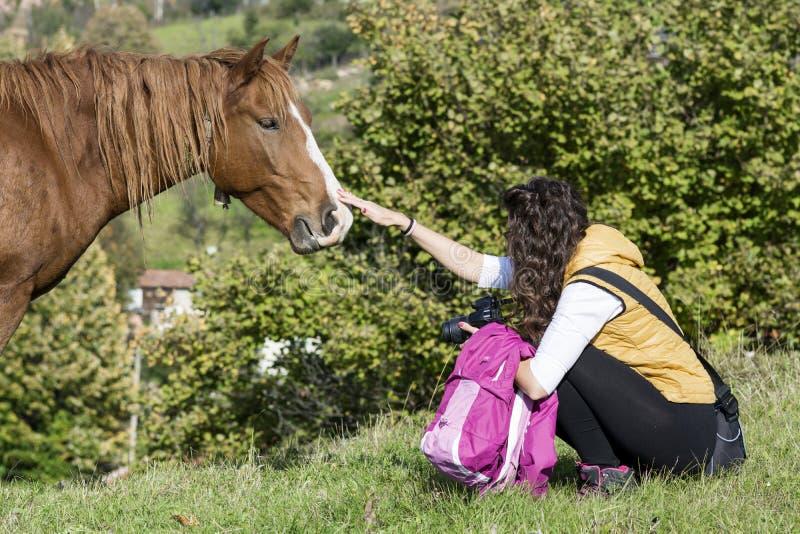 Junge Frau, die ein schönes rotes wildes Pferd streicht stockfotografie