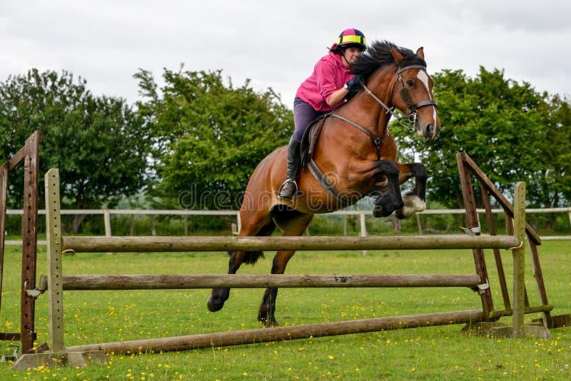 Junge Frau, die für Freude auf ihrem Pferd springt stockbilder