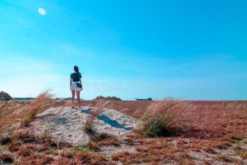 Junge Frau, Die Heraus über Der Landschaft Schaut Kostenlose Öffentliche Domain Cc0 Bild