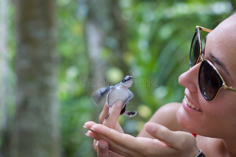 Junge Frau, die neugeborene Schildkröte in den Fingern holt stockfotos