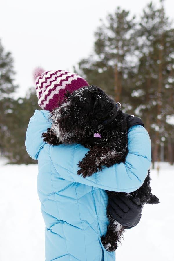 Junge Frau hält ihren gefrorenen schwarzen Zwergschnauzer durch Hände auf einem Hintergrund des Winterkoniferenwaldes lizenzfreies stockfoto