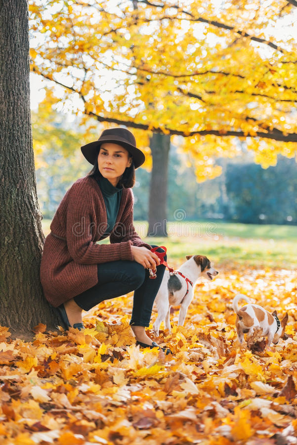 Junge Frau mit dem Hund, der draußen im Park steht stockfoto