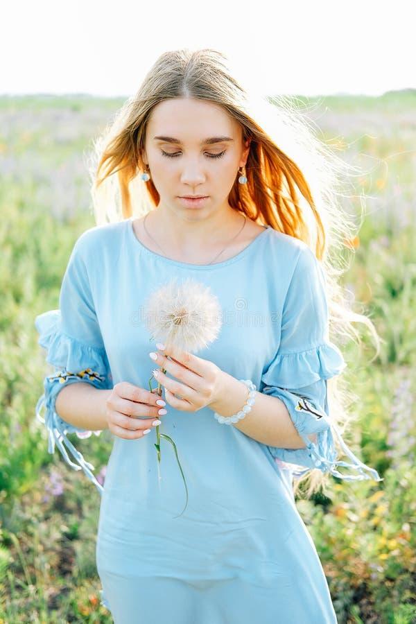 Junge Frau mit dem langen blonden Haar, das trockene Löwenzahnblume hält stockfotos