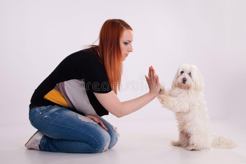Junge Frau mit ihrem Hund stockfotografie