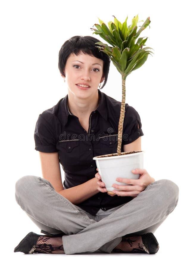 Junge Frau mit Innenanlagen stockfotos