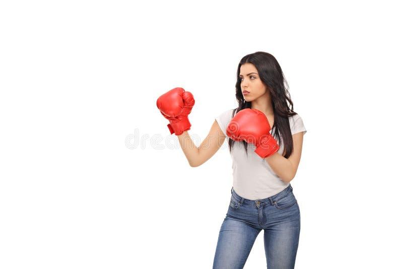 Junge Frau mit roten Verpackenhandschuhen stockbilder