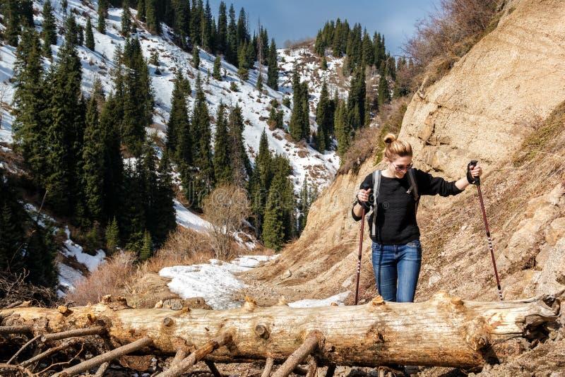 Junge Frau mit Spazierstöcken überwindt ein Hindernis - einen gefallenen Baum auf einer Spur stockfoto