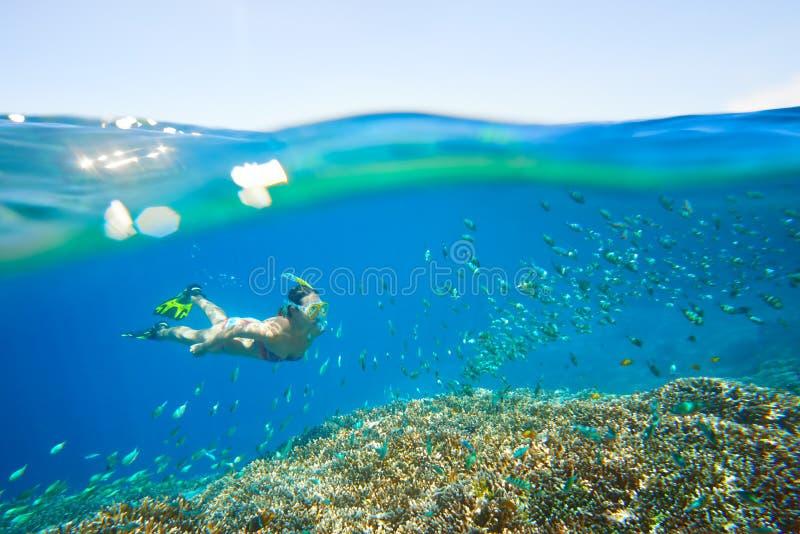 Junge Frau am Schnorcheln im tropischen Türkiswasser stockfotografie