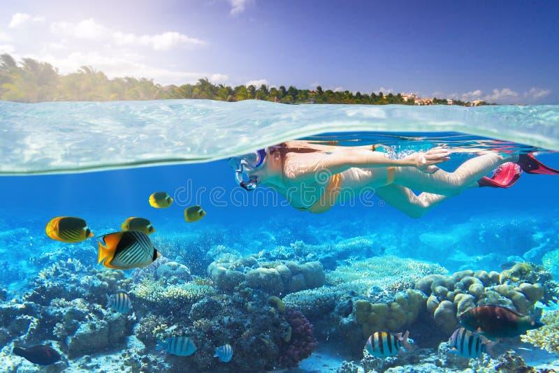 Junge Frau am Schnorcheln im tropischen Wasser stockbild