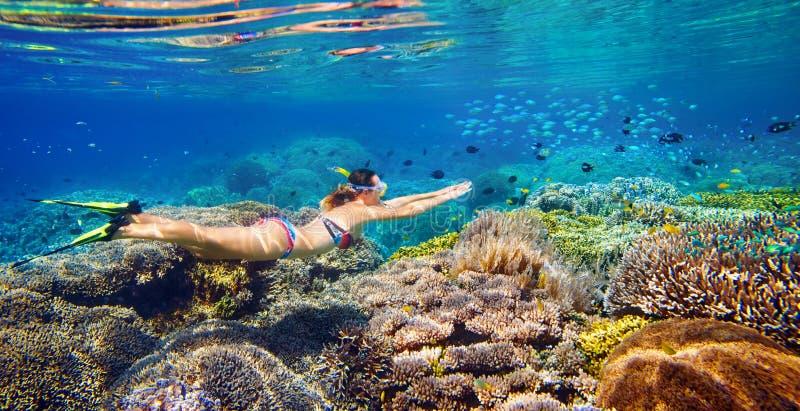 Junge Frau am Schnorcheln im tropischen Wasser lizenzfreie stockfotografie