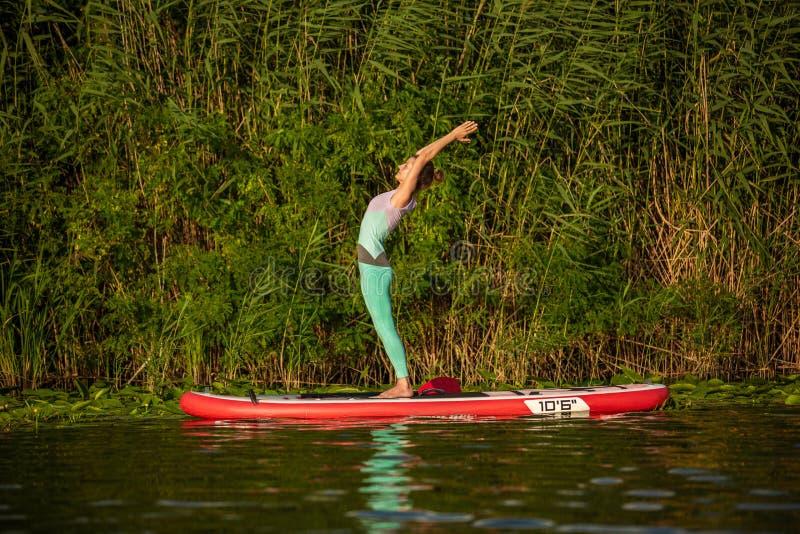 Junge Frau tun Yoga auf einer Radschaufel des Stands oben DINIEREN auf einem schönen See oder einem Fluss lizenzfreie stockfotos