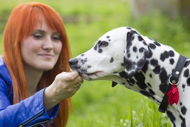 Junge Frau und ihr Hund stockfotos