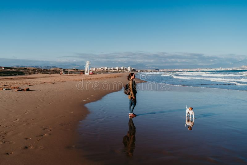junge Frau und ihr Hund am Strand bei Sonnenuntergang stockbilder