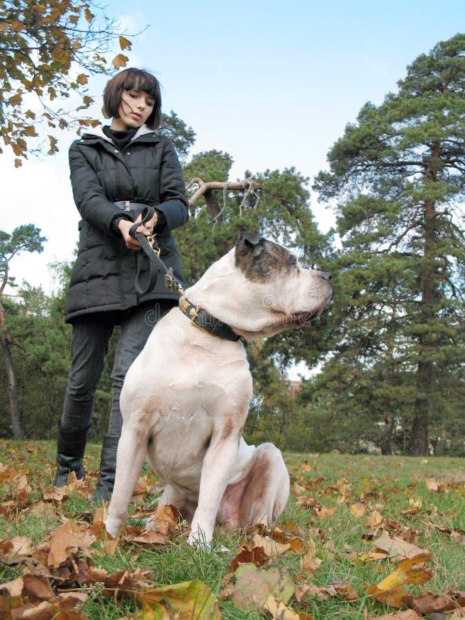 Junge Frau und starker Hund lizenzfreies stockfoto