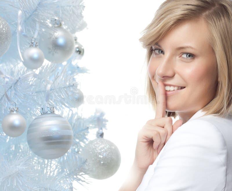 Download Junge Frau Vor Spiegel Im Verfassungsraum Stockfoto - Bild von schönheit, chef: 106803594