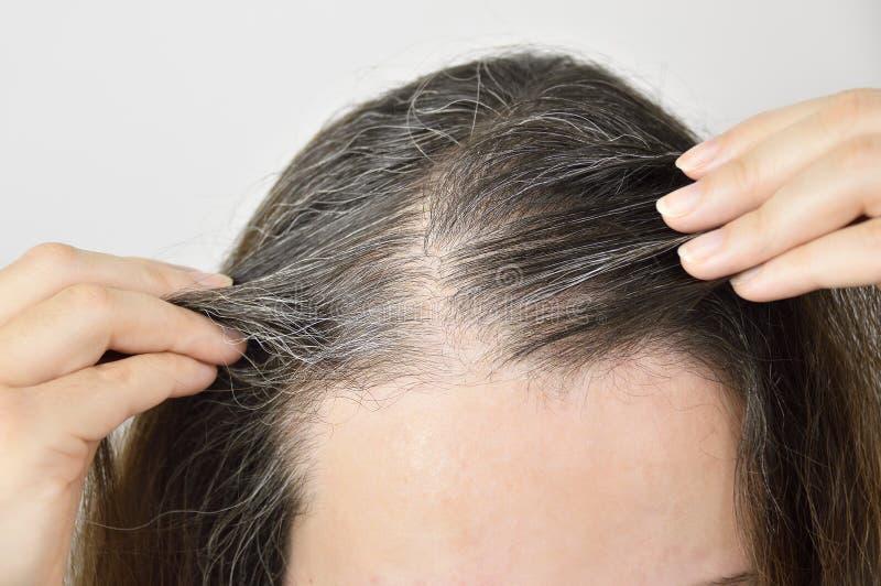 Junge Frau zeigt ihr graues Haar stockfoto