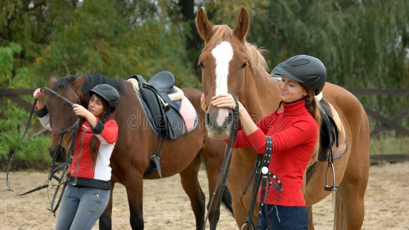 Junge Frauen, die Pferde für das Reiten vorbereiten stockfotografie