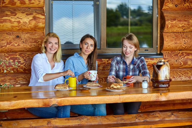 Junge Frauen, die Tee trinken stockfotos