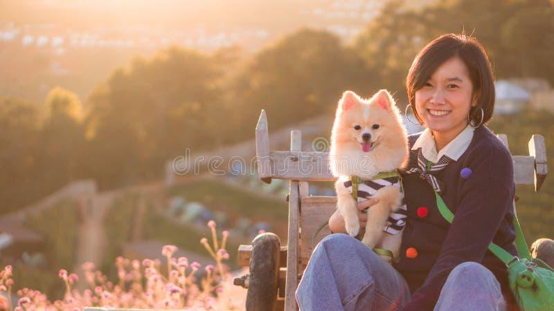 Junge Frauen umarmten und küssen ihren lieblichen pomeranischen Hund auf rosafarbenen Blumenfeldern bei Sonnenuntergang und kopie stockbilder