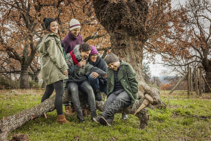 Junge Freunde sitzen in einem großen Stamm eines Baumlachens Herbstland lizenzfreies stockbild