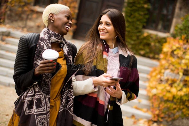 Junge gemischtrassige Freunde, die um Herbstpark gehen stockfotografie