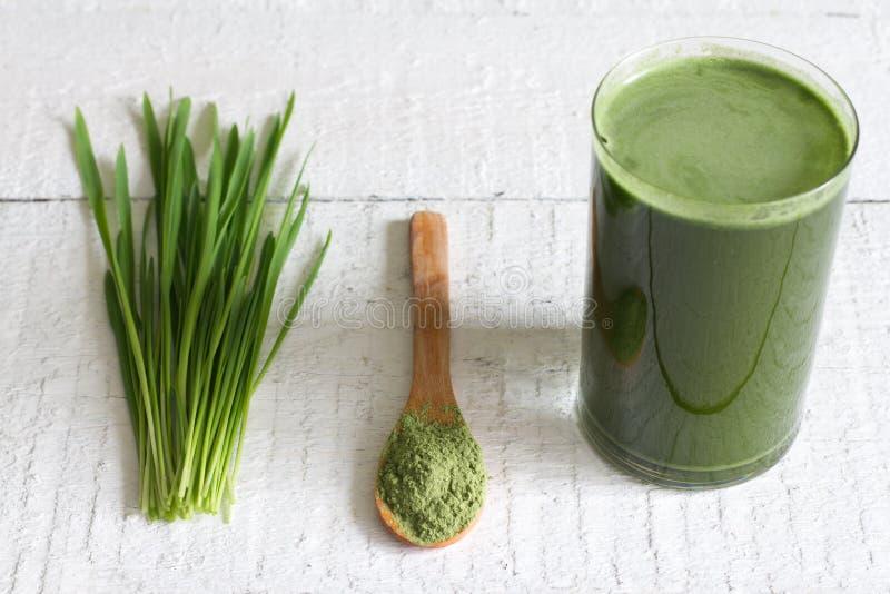 Junge Gerste mit neuem Gras Detox-Diätkonzept lizenzfreie stockbilder