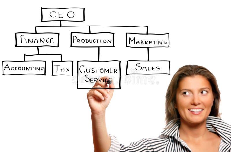 Junge Geschäftsfrau- und Geschäftshierarchie lizenzfreie stockfotografie