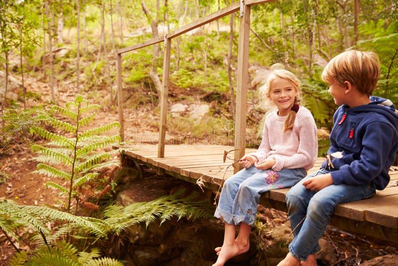Junge Geschwister, die auf Holzbrücke in einem Wald sitzen stockfotografie