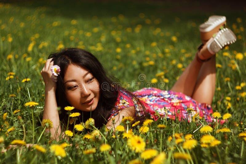 Junge glückliche asiatische Frau auf dem Gebiet mit Löwenzahn in der Wiese ein sonniger Tag stockbild