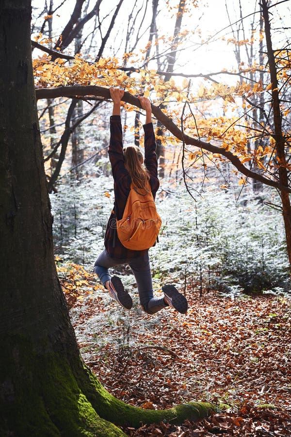 Junge glückliche Frau, die am Baum im Holz mit orange Rucksack hängt Lustiges Mädchen, das herum auf einem Waldhintergrund täusch lizenzfreie stockbilder
