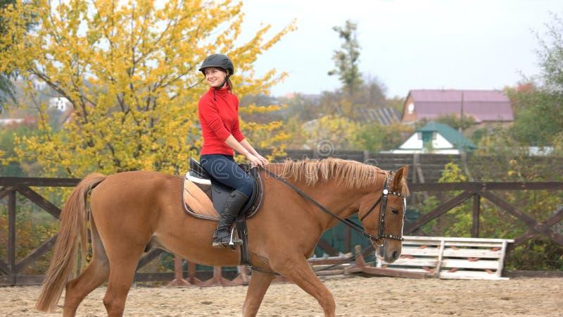 Junge glückliche Frau, die ein Pferd reitet stockfotos