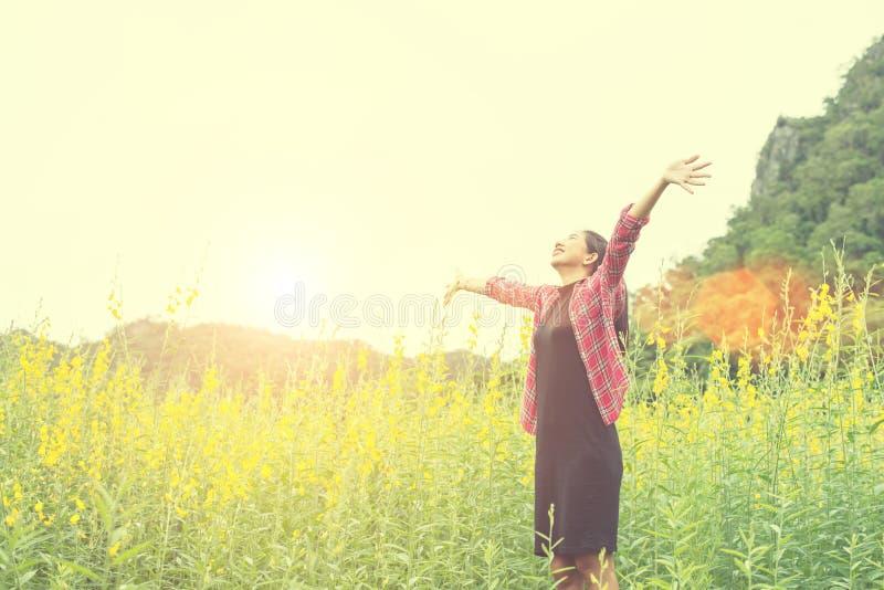 Junge glückliche Frau, die Hände auf dem gelben Blumengebiet auf Sonnenuntergang anhebt stockfotografie