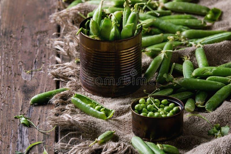 Junge grüne Erbsen stockfotos