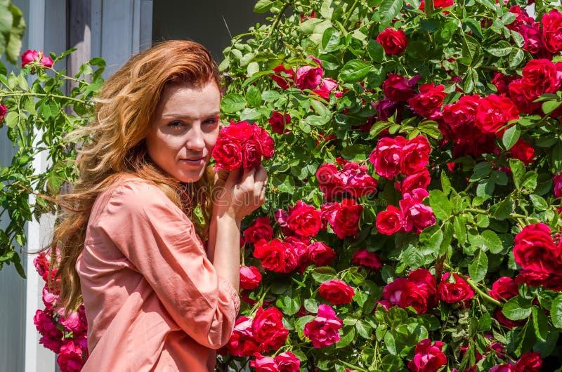 Junge hübsche Frau mit dem langen Haarlächeln glücklich im Busch von roten Rosen lizenzfreie stockfotos